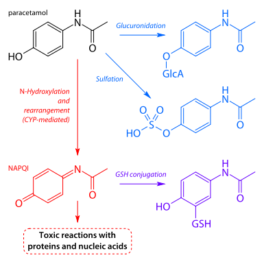 morphine vs oxycodone strength - MedHelp